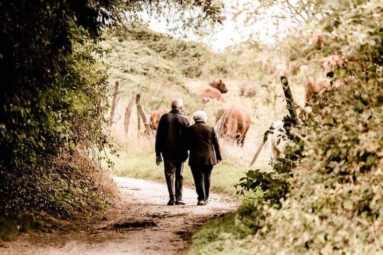 Memoria collettiva: i racconti dei nonni