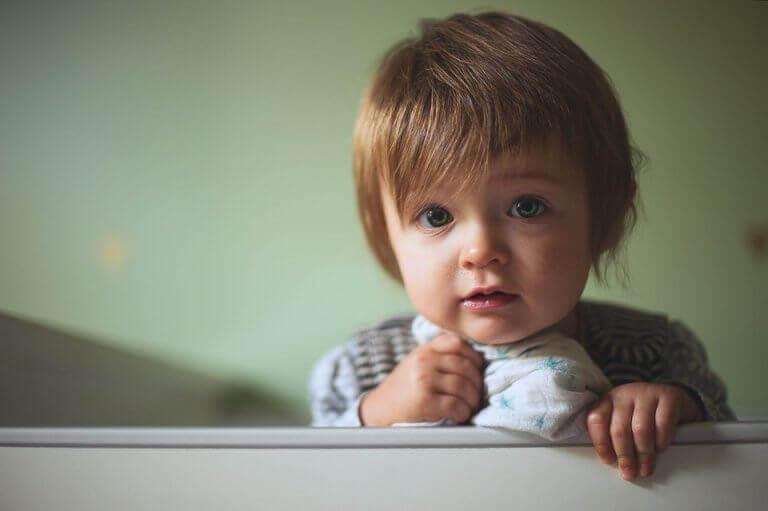 Sviluppo del bambino a9 mesi
