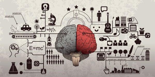 Cervello e psicologia pubblicitaria
