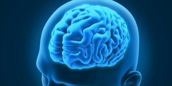 Cervello disturbi neurologici