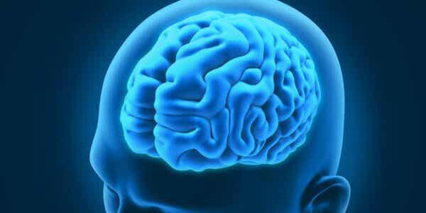 Disturbi neurologici curiosi e interessanti