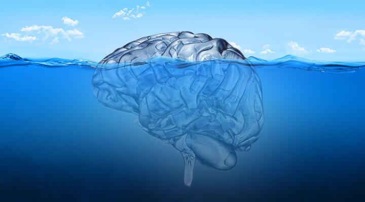 Cervello in acqua