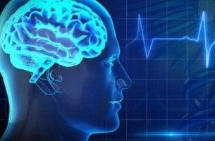 Immagine salute cerebrale