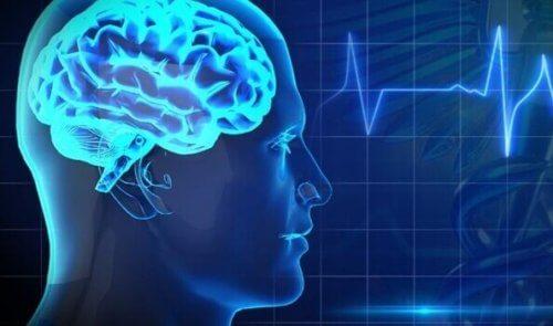 Salute cerebrale: 5 grandi nemici