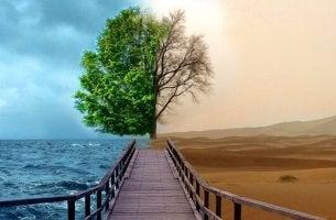 Paesaggio con mare e deserto la Terapia della Gestalt