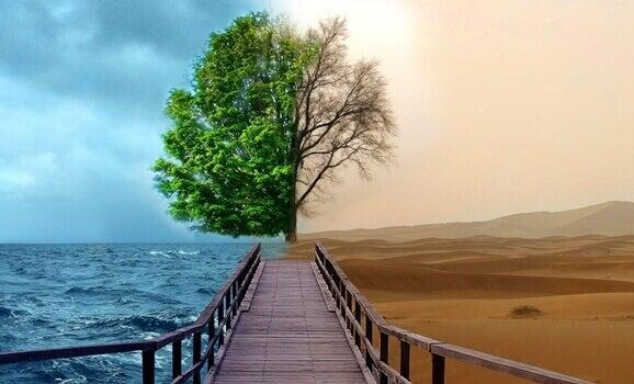 La Terapia della Gestalt per trattare la depressione