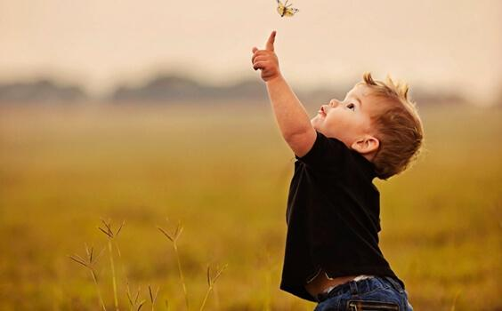 Bambino toccando farfalla