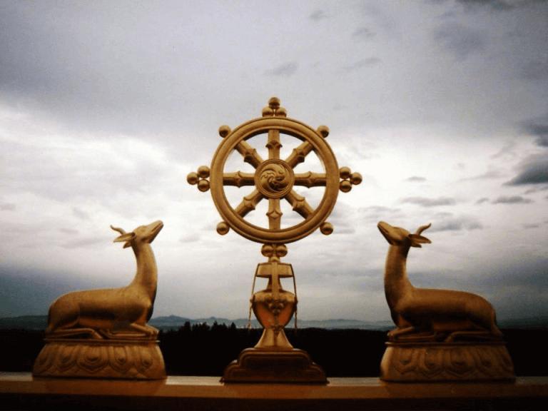 Chakra Dharmico