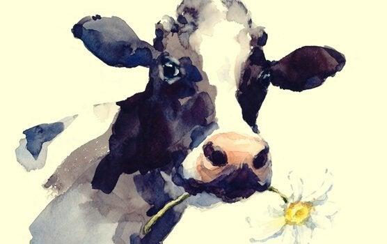 Mucca con fiore racconto zen