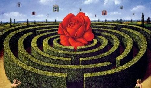 Labirinto con rosa al centro