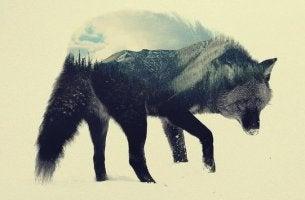 Lupo sovrapposto a montagne il lupo della steppa
