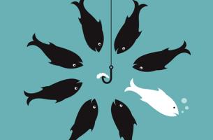 Un pesce bianco che scappa