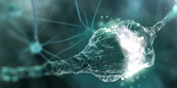 Spazio sinaptico: cos'è?