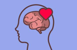 Cervello con un cuore