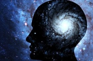 Immagine cervello umano