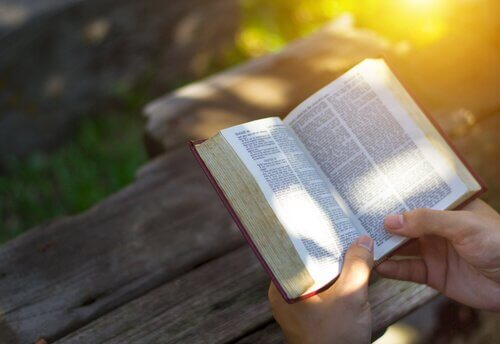 Libro aperto mentre una persona lo legge