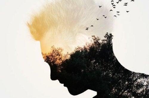 Mancanza di intelligenza emotiva