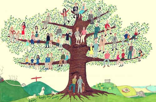 Albero genealogico: cosa possiamo imparare?