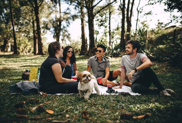 Amici seduti al parco