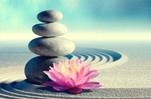 Comandamenti zen - pietre con fiore di loto