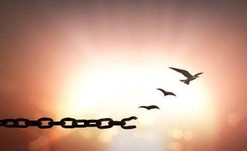 Perdonare: 7 frasi per riuscirci
