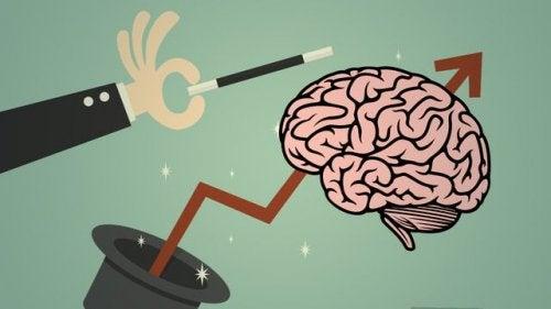 Cervello che esce da un cilindro