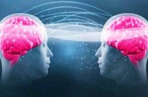 Triptofano e serotonina