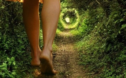Gambe che camminano su un sentiero