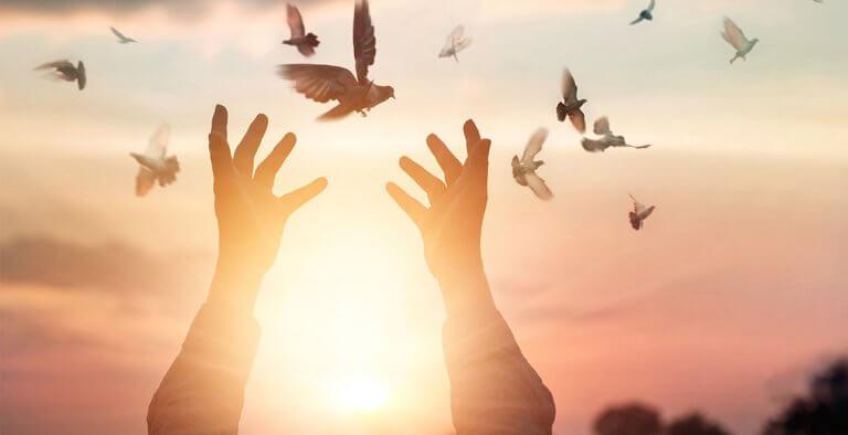 Mani aperte e uccelli che volano