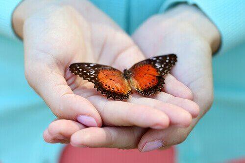 Mani con farfalla