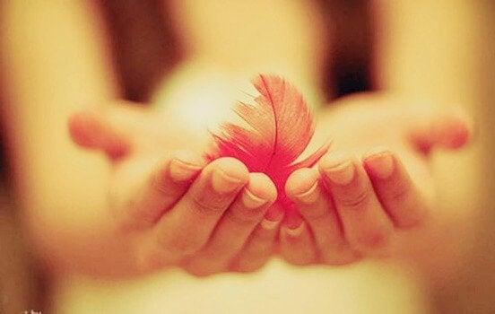 Mani con piuma la gentilezza
