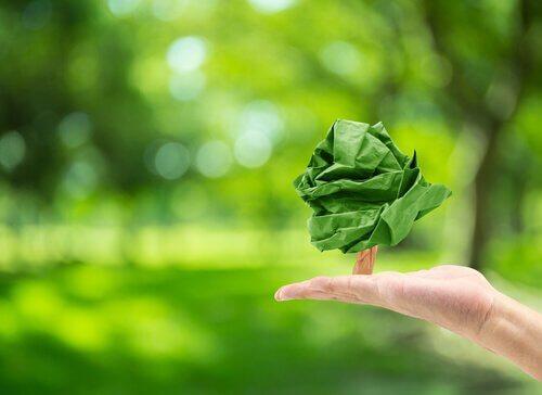 "Psicologia ambientale: cos""è?"