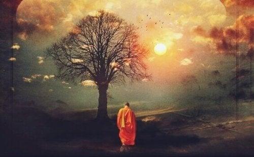 Monaco buddhista vicino a un albero