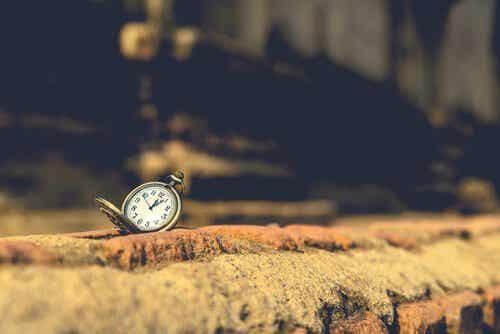 Citazioni di Orhan Pamuk per riflettere sulla vita