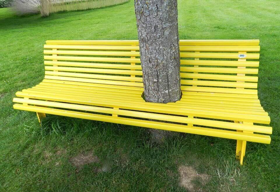 Panchina con tronco d'albero nel mezzo