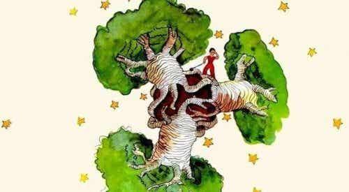Baobab nel cuore, riflessioni da Il Piccolo Principe