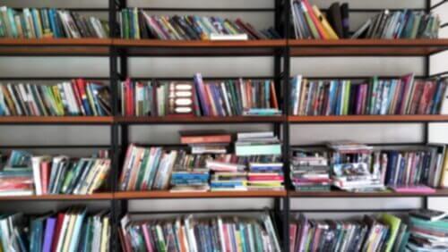 Uno scaffale pieno di libri