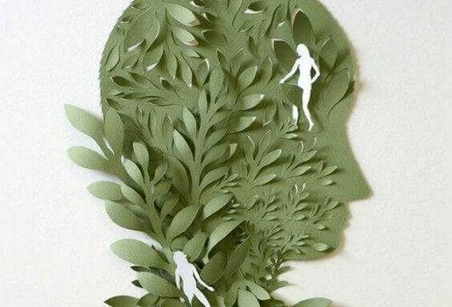 Testa con foglie