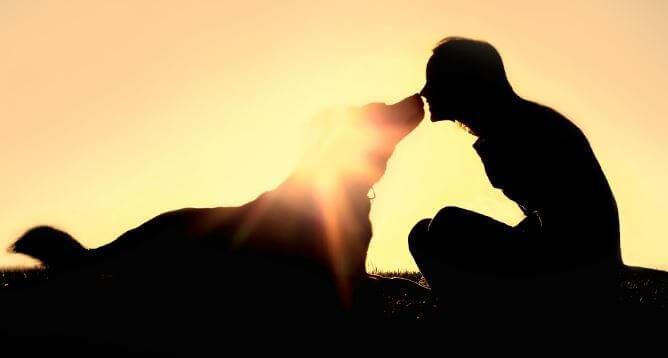 Persona col suo cane