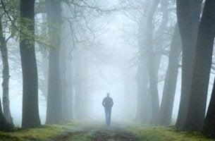 Test del bosco