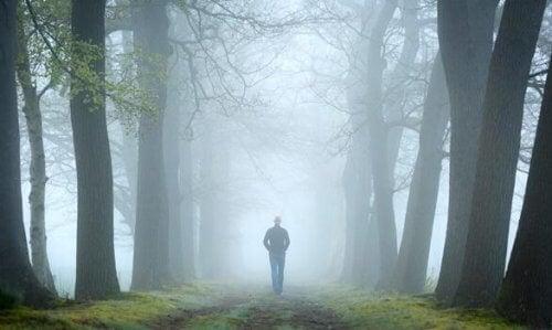 Test del bosco: prova di psicoanalisi relazionale