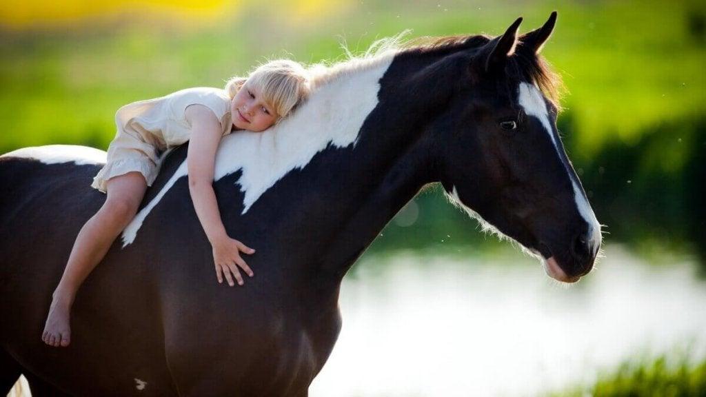 Bambina abbracciata al cavallo