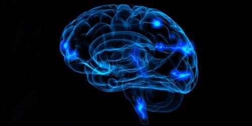 Il metodo di loci incrementa l'attività cerebrale