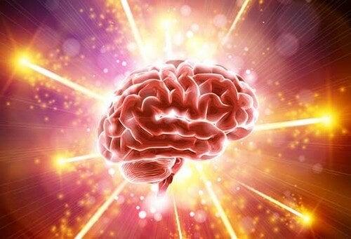 Cervello e luce