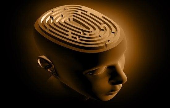 Cervello come un labirinto