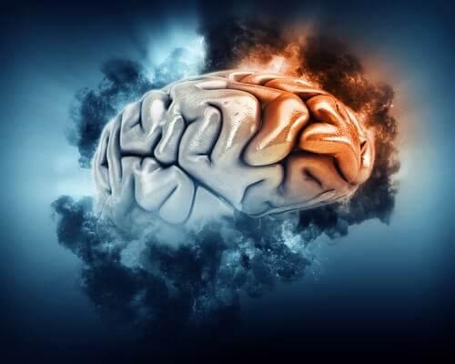Il lobro frontale del cervello