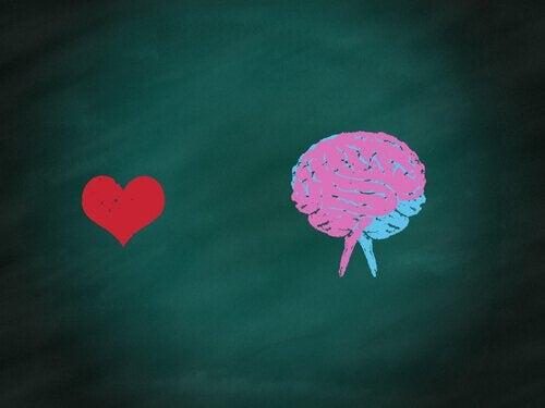 Cuore e cervello disegnati su lavagna equilibrio umano