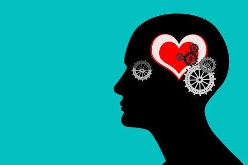 Ingranaggi mente e cuore