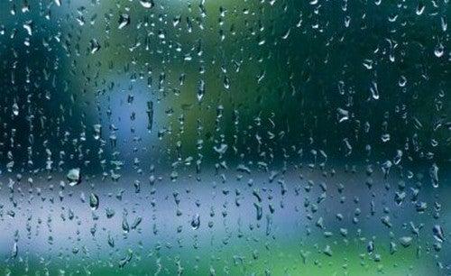 Rumore della pioggia: dolce melodia per il cervello