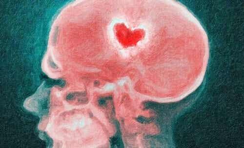 Rottura di coppia e cervello: scienza dei cuori infranti